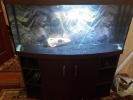 Аквариум панорамный 315 литров