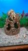 Декор для аквариума и 2 сомика