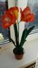 Комнатные цветы из фоамирана