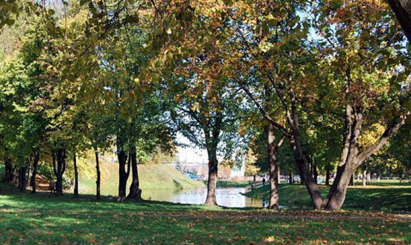 В Летнем парке установят немецкое очистное оборудование